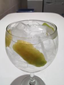 Gin Tonic Citadelle+Lima+Limón realizado con la App Gin's Pro para Iphone e Ipad